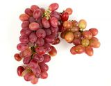 Extra Large/Jumbo Premium Red Seedless Grapes
