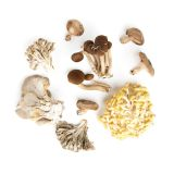 Chef Mix Mushrooms