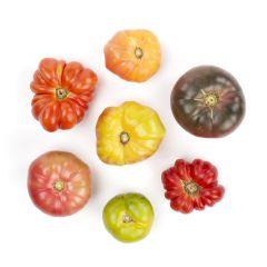 Organic Food Distributors Ct