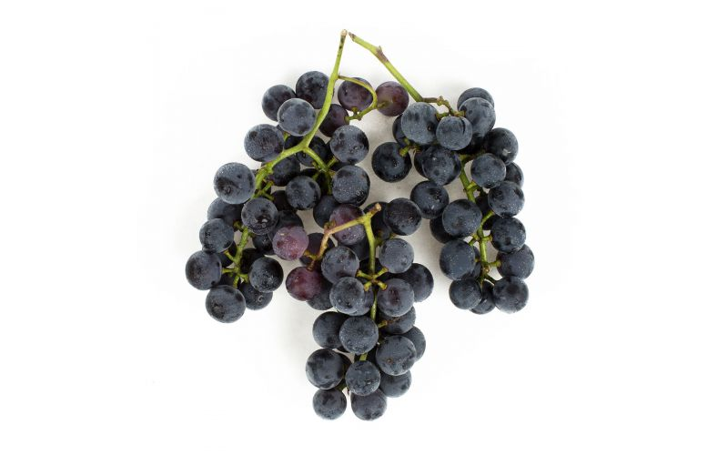 Red Jacket Orchards Concord Grapes