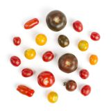 True Rebel Mix® Tomato Clamshells
